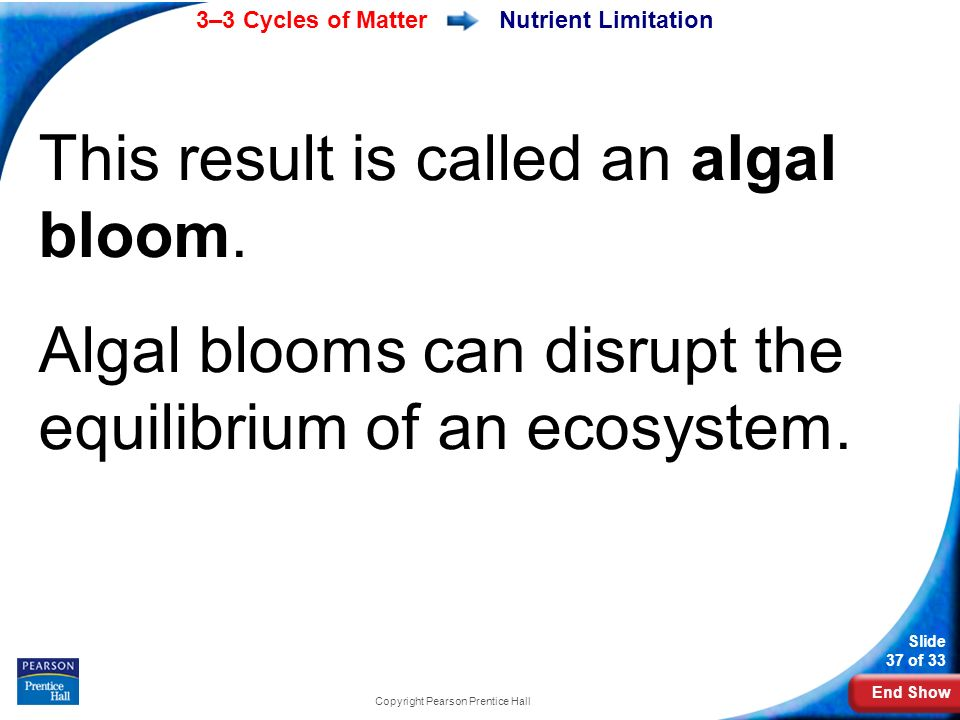 End Show 3–3 Cycles of Matter Slide 37 of 33 Copyright Pearson Prentice Hall Nutrient Limitation This result is called an algal bloom.
