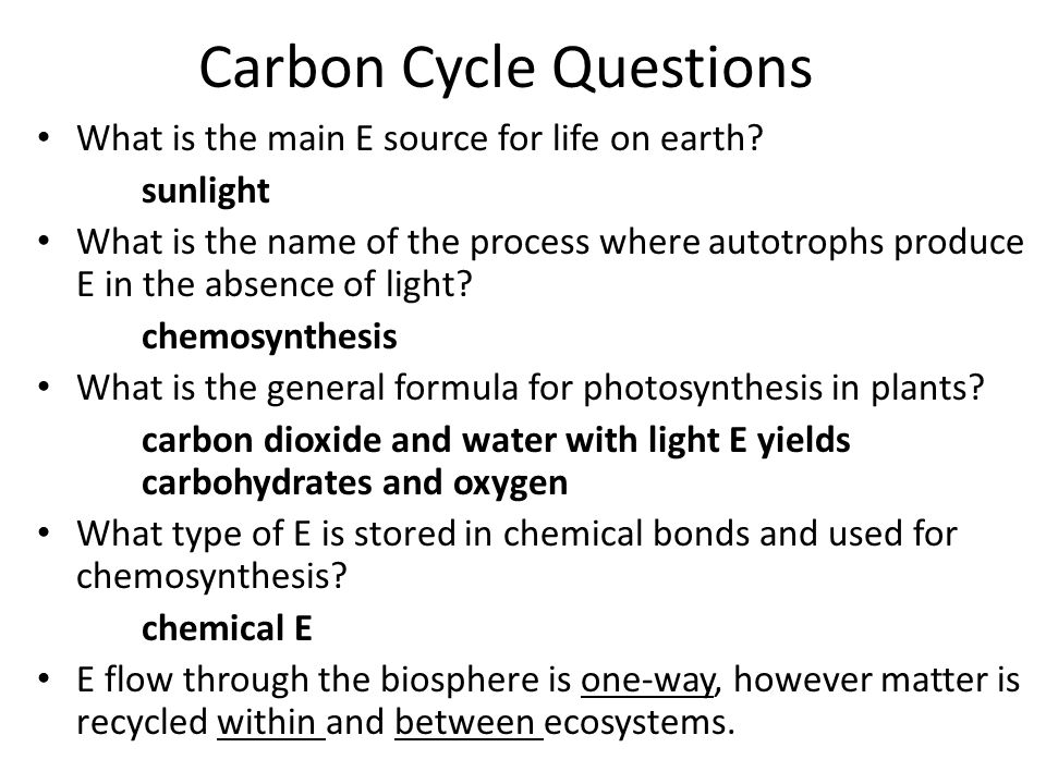 Carbon Cycle Questions What is the main E source for life on earth.