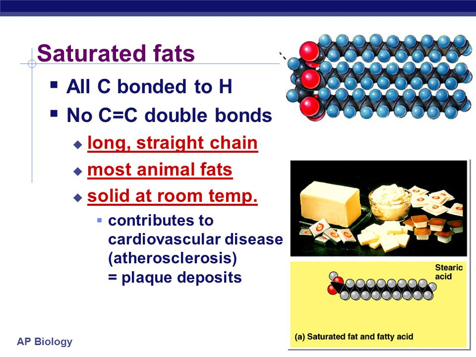 AP Biology Fats store energy  Long HC chain  polar or non-polar.