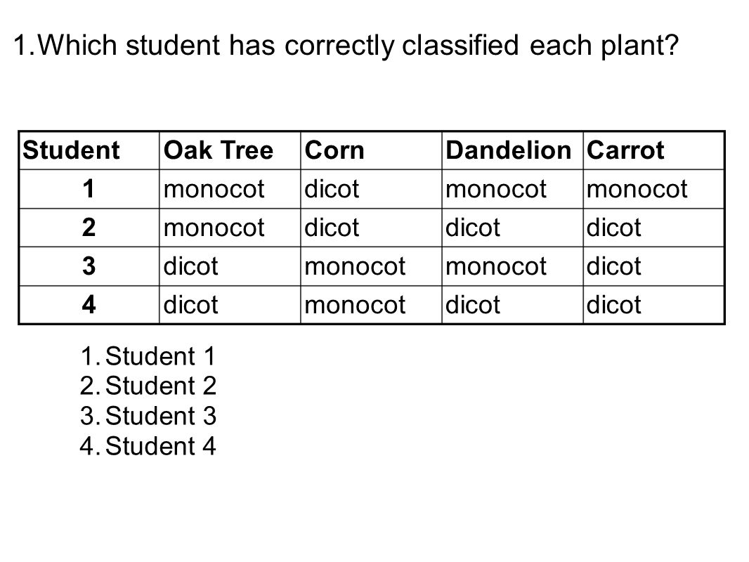 1.Which student has correctly classified each plant.