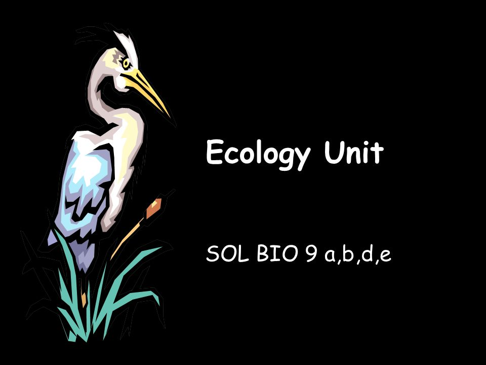 Ecology Unit SOL BIO 9 a,b,d,e  BIO SOL: 9 a,b,d,e The student will
