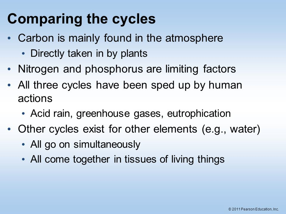 2011 pearson education inc matter cycling in ecosystems nutrient 22 2011 pearson education inc comparing the cycles carbon ccuart Gallery