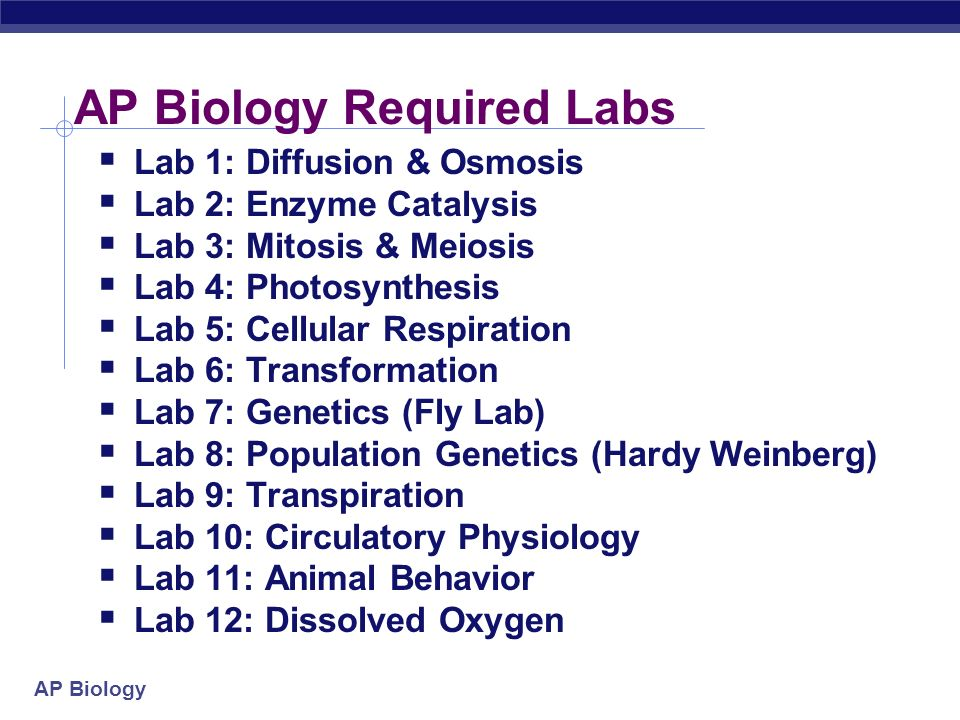 ap bio pre lab The laboratory investigations 121 participating in the ap course audit 122 curricular requirements 122 resource requirements 123  ap biology development committee, in conjunction with ets test developers these changes, effective fall 2015, include corrections to errors.