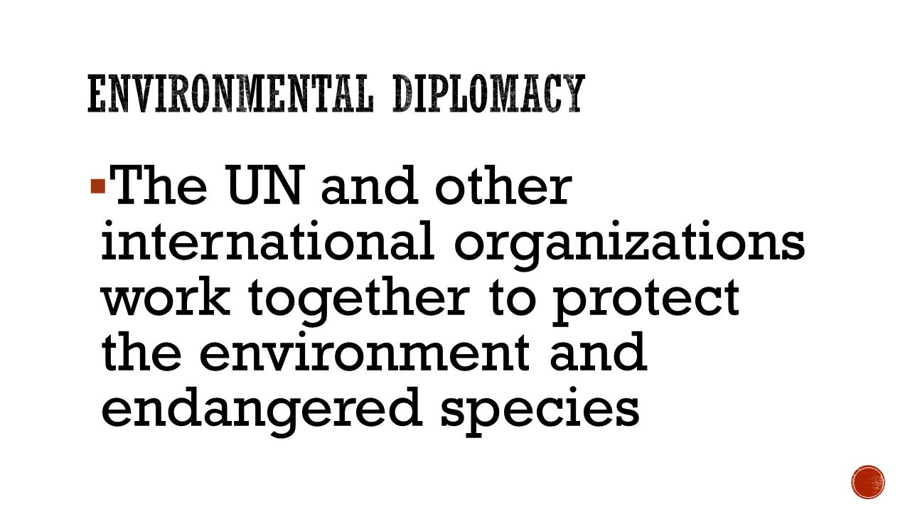  The UN and other international organizations work together to protect the environment and endangered species