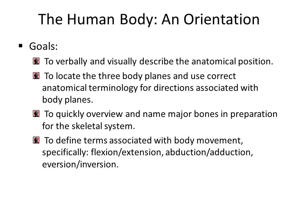 Welcome To Anatomy Physiology Ii Mr Charles Martinez Iii Ms