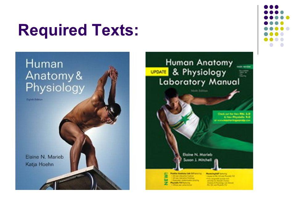 Biology 241: Human Anatomy and Physiology 1 Instructor: Joel Dahms ...