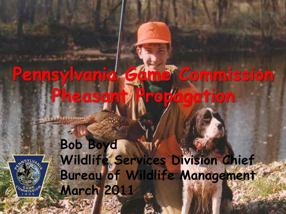 Pennsylvania Game Commission Pheasant Propagation Bob Boyd