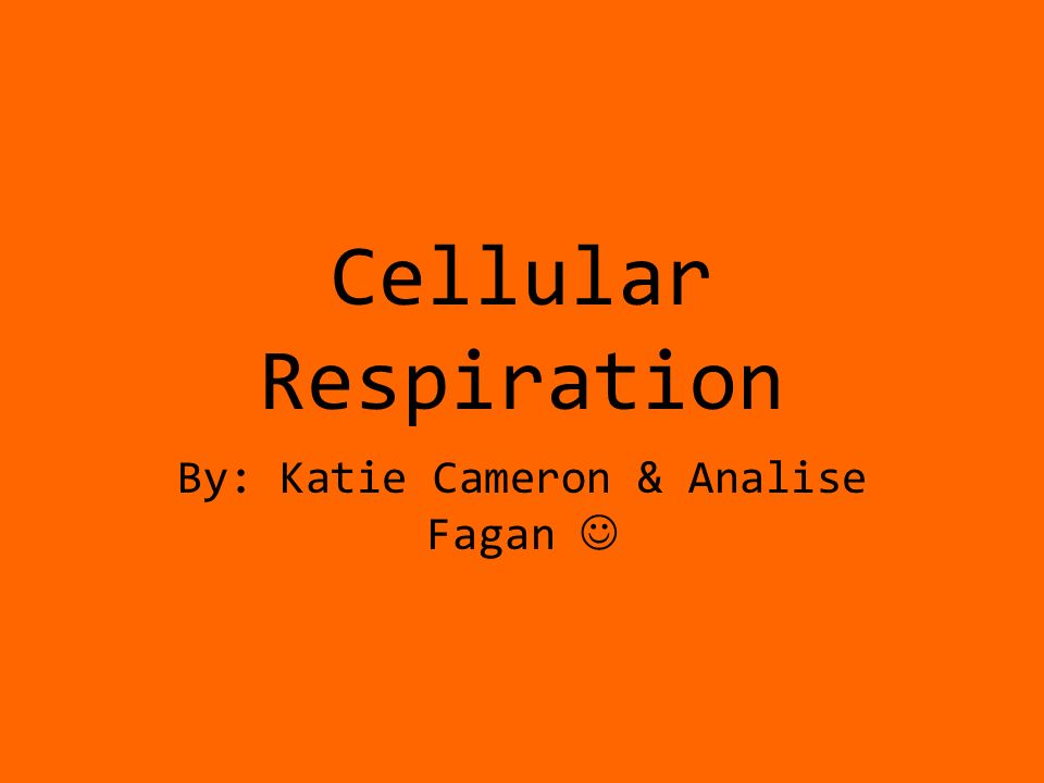 Cellular Respiration By: Katie Cameron & Analise Fagan