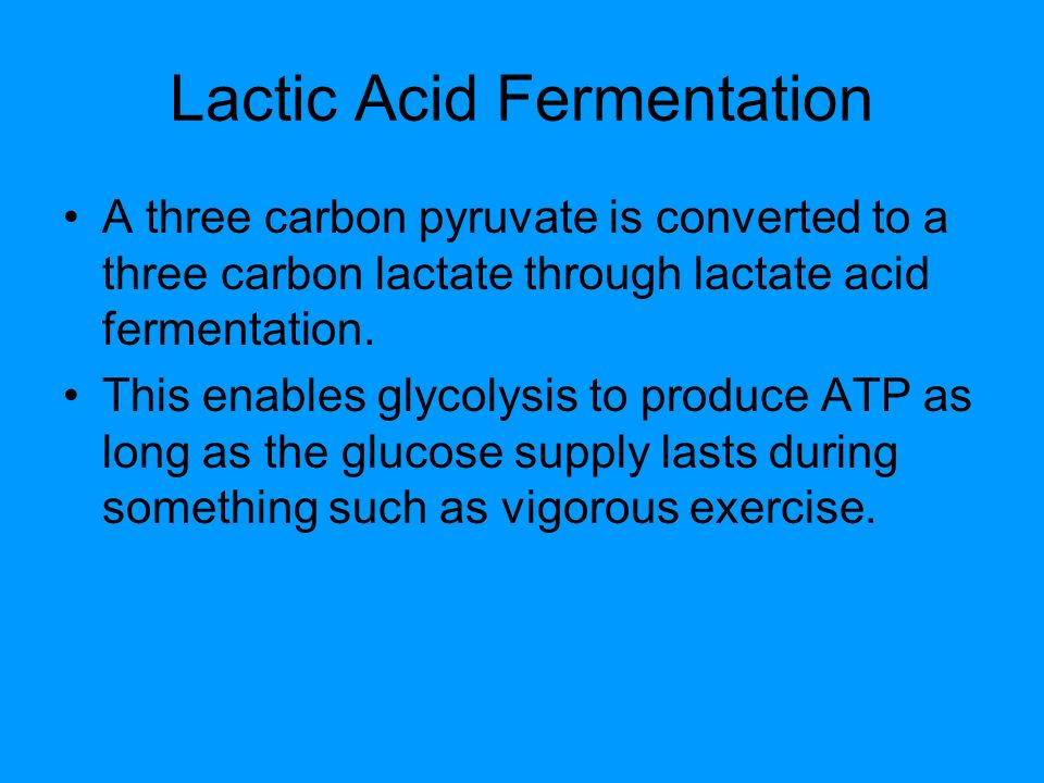 Lactic Acid Fermentation A three carbon pyruvate is converted to a three carbon lactate through lactate acid fermentation.