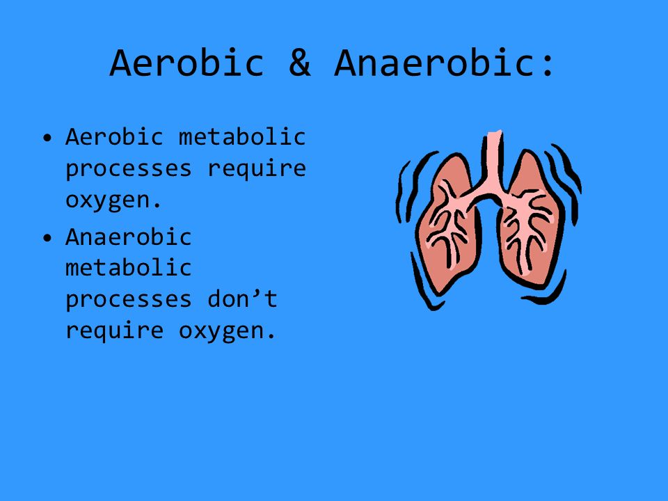 Aerobic & Anaerobic: Aerobic metabolic processes require oxygen.