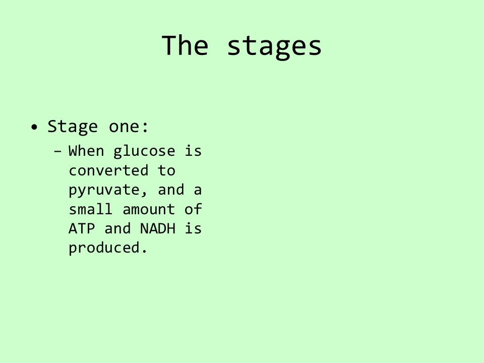 The stages Stage one: –When glucose is converted to pyruvate, and a small amount of ATP and NADH is produced.