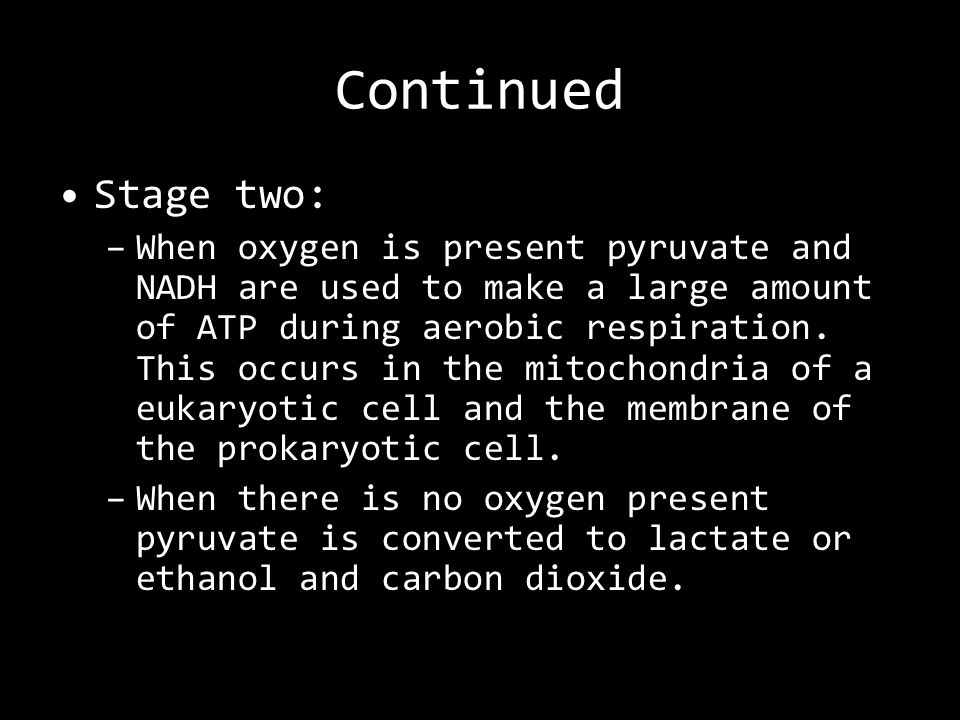 Continued Stage two: –When oxygen is present pyruvate and NADH are used to make a large amount of ATP during aerobic respiration.
