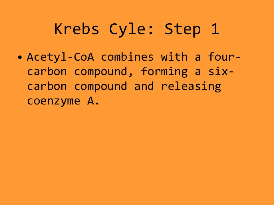 Krebs Cyle: Step 1 Acetyl-CoA combines with a four- carbon compound, forming a six- carbon compound and releasing coenzyme A.