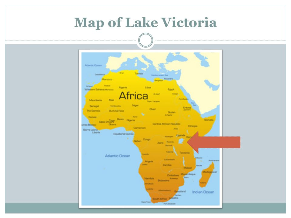 Lake Victoria On Map Of Africa.Activity 72 The Miracle Fish Challenge What Are The Trade Offs Of