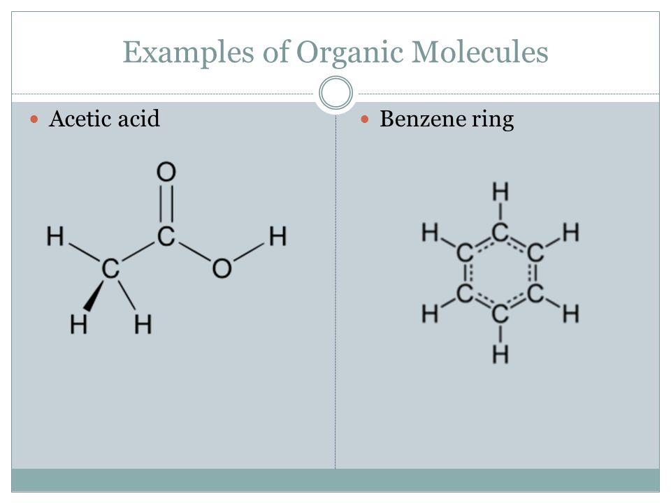 Chapter 6 Section 4 Macro Molecules Organic Chemistry The Element