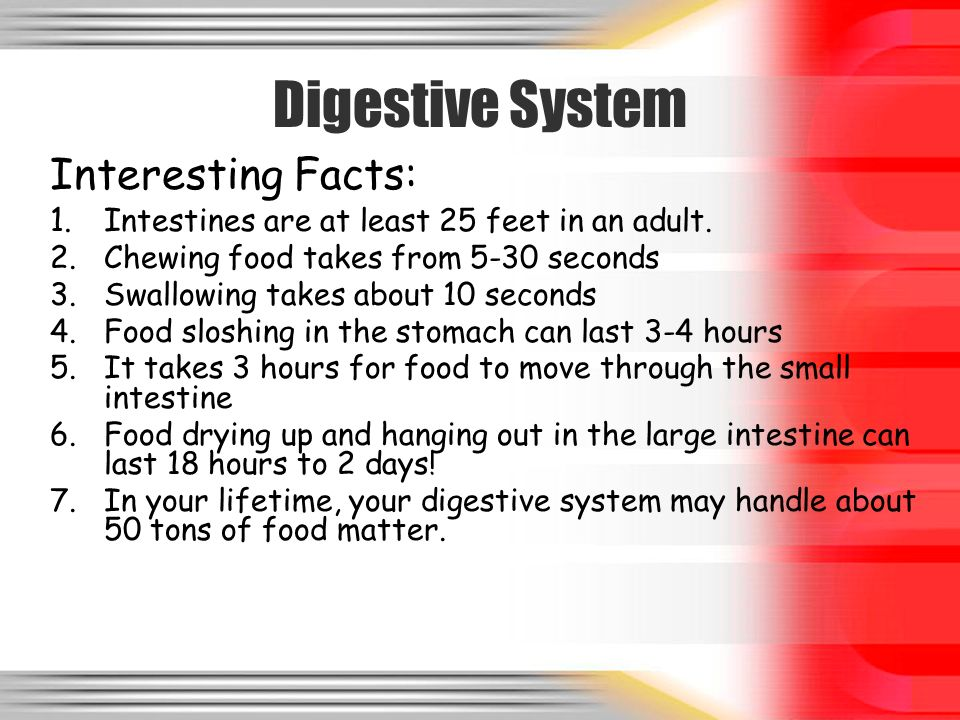 Systems Overview Human Body Systems. DIGESTIVE SYSTEM. - ppt download