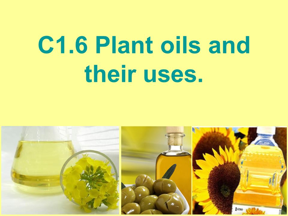 C1 6 Plant Oils And Their Uses Starter List As Many Uses Of