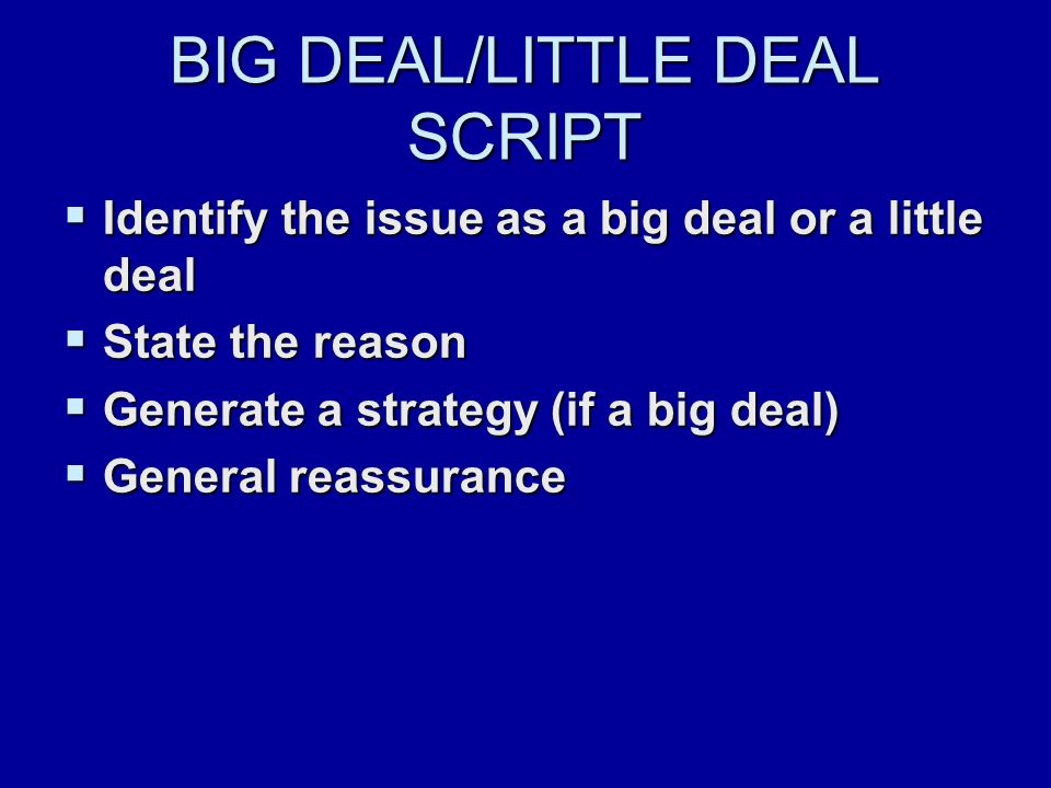 BIG DEAL/LITTLE DEAL SCRIPT  Identify the issue as a big deal or a little deal  State the reason  Generate a strategy (if a big deal)  General reassurance