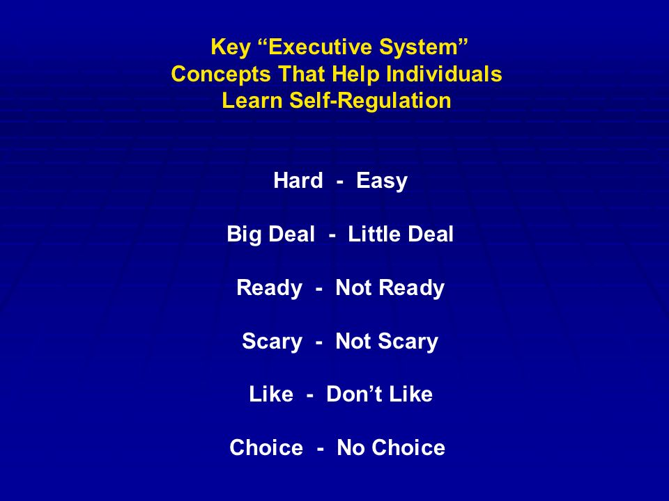 Key Executive System Concepts That Help Individuals Learn Self-Regulation Hard - Easy Big Deal - Little Deal Ready - Not Ready Scary - Not Scary Like - Don't Like Choice - No Choice