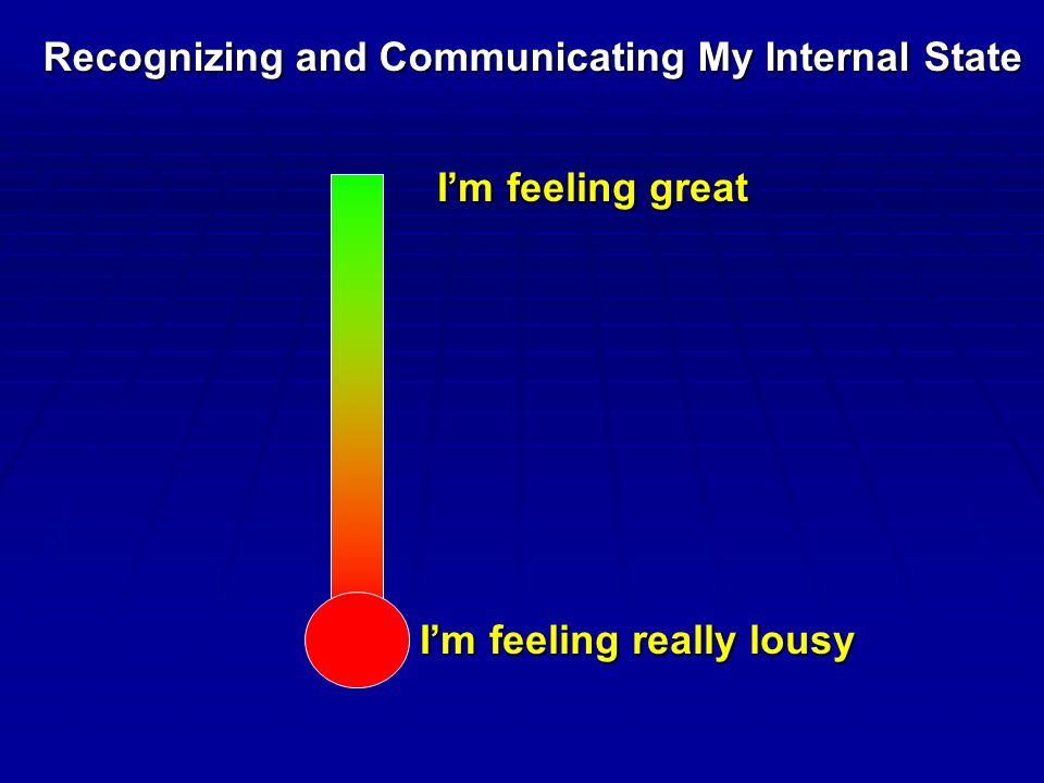 I'm feeling really lousy I'm feeling great Recognizing and Communicating My Internal State