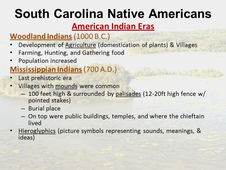 South Carolina Native Americans Standard Summarize The Collective