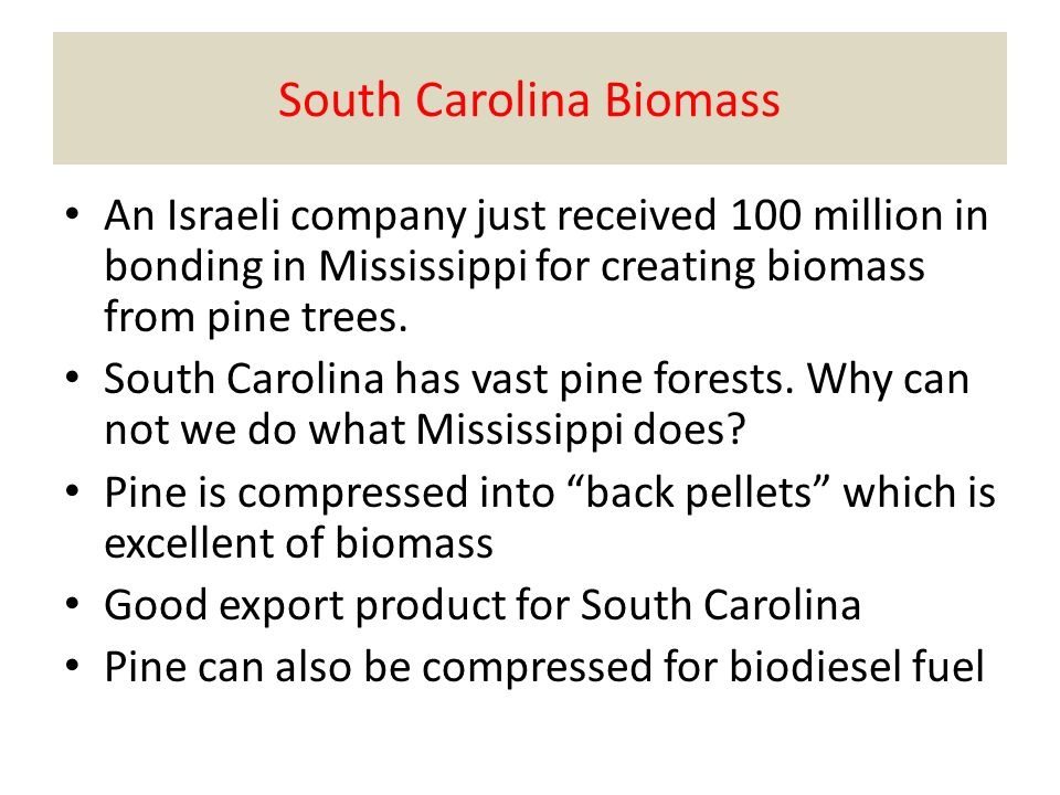 South Carolina Biomass An Israeli company just received 100 million in bonding in Mississippi for creating biomass from pine trees.