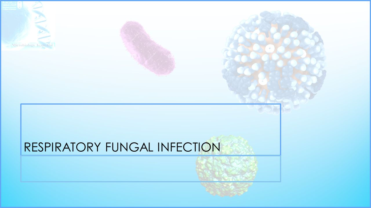 RESPIRATORY FUNGAL INFECTION