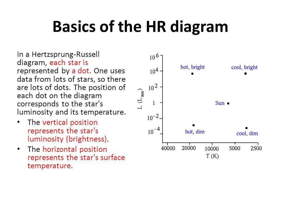 Astronomy hr diagrams eq how does the hr diagram show different basics of the hr diagram in a hertzsprung russell diagram each star is represented ccuart Choice Image