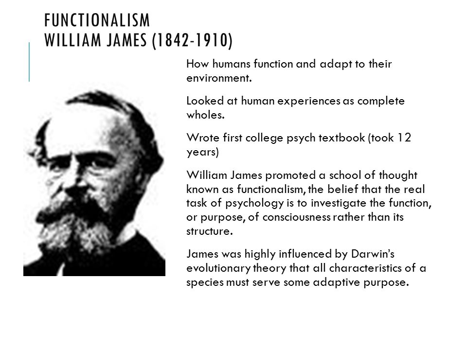 history of functionalism