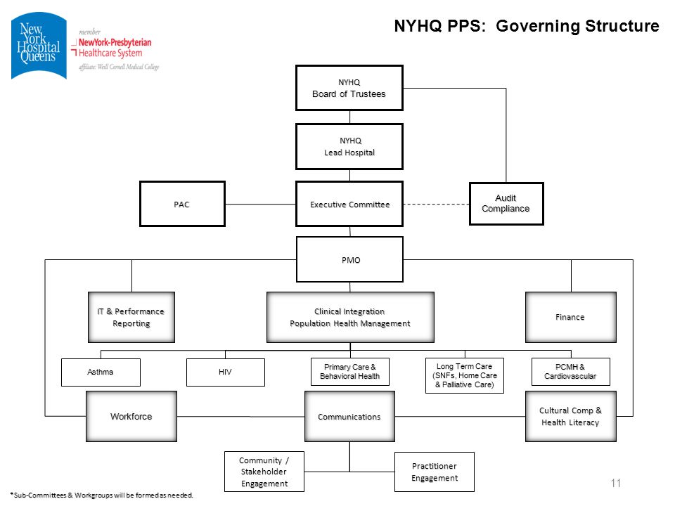 New York Hospital Queens DSRIP PPS PAC Meeting June 19, ppt