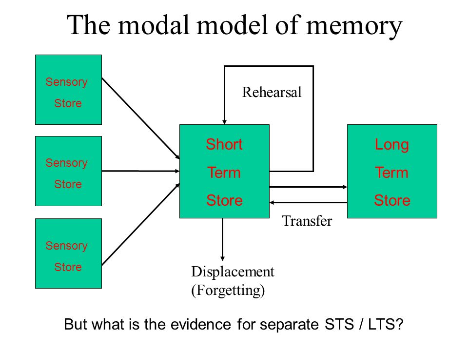 memory outline Encoding is the crucial first step to creating a new memory it allows the perceived item of interest to be converted into a construct that can be stored within the brain, and then recalled later from short-term or long-term memory.