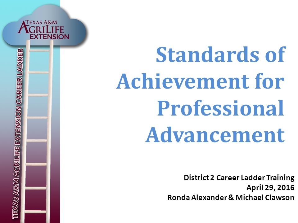 Standards Of Achievement For Professional Advancement District 2