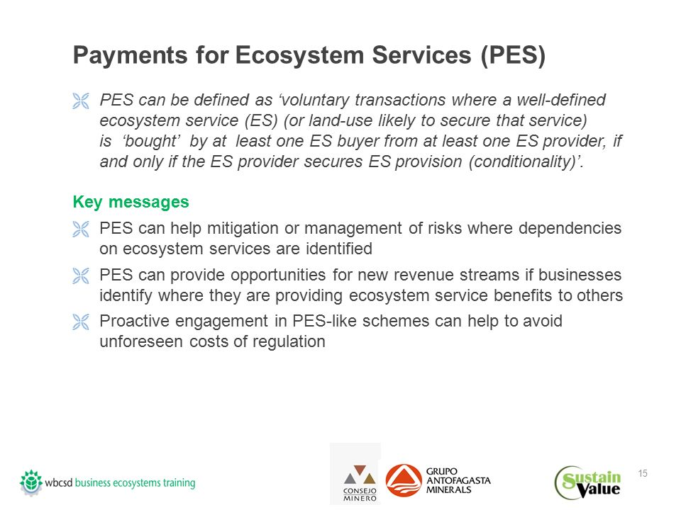 15 Payments for Ecosystem Services (PES)  PES can be defined as 'voluntary transactions where a well-defined ecosystem service (ES) (or land-use likely to secure that service) is 'bought' by at least one ES buyer from at least one ES provider, if and only if the ES provider secures ES provision (conditionality)'.