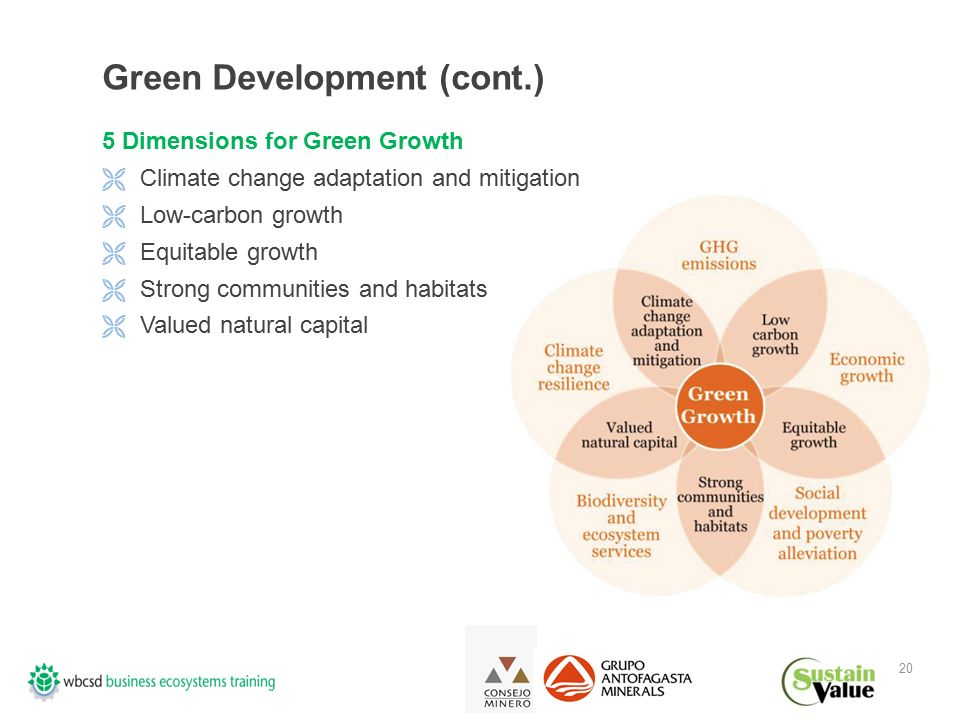 20 Green Development (cont.) 5 Dimensions for Green Growth  Climate change adaptation and mitigation  Low-carbon growth  Equitable growth  Strong communities and habitats  Valued natural capital Source: PwC and WWF