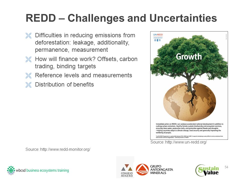 54 REDD – Challenges and Uncertainties  Difficulties in reducing emissions from deforestation: leakage, additionality, permanence, measurement  How will finance work.