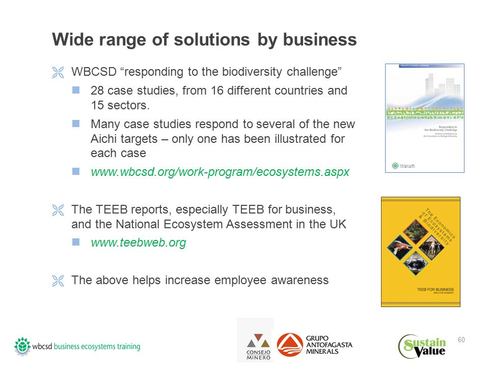 60 Wide range of solutions by business  WBCSD responding to the biodiversity challenge 28 case studies, from 16 different countries and 15 sectors.