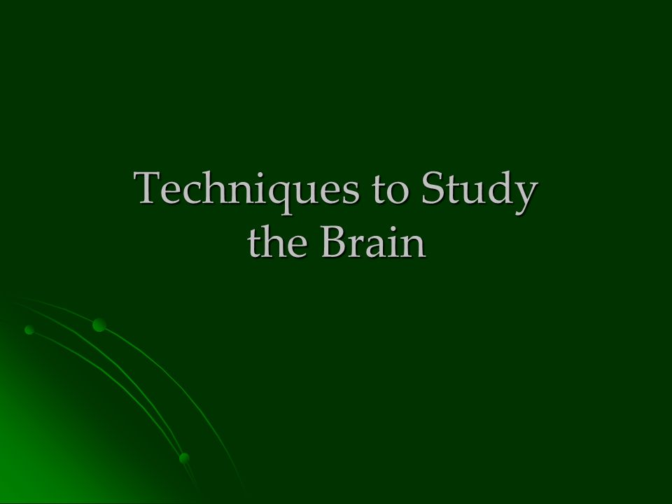 Techniques to Study the Brain. In the olden days… It was really ...