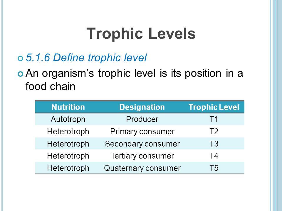 13 trophic