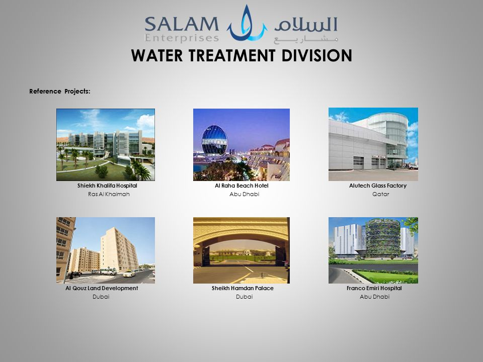 COMPANY PROFILE  INTRODUCTION SALAM ENTERPRISES LLC is a