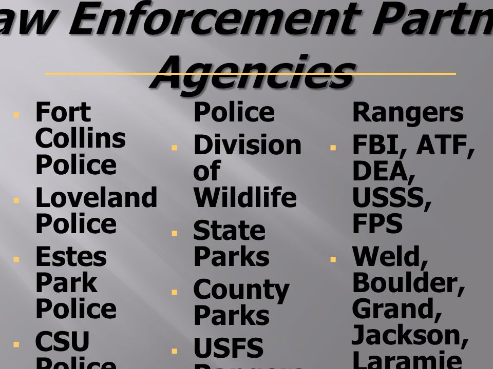 Sheriff Justin E  Smith   Law Enforcemen t  Keeper of the Jail