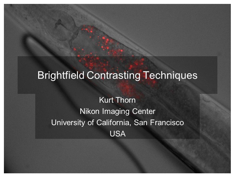 Brightfield Contrasting Techniques Kurt Thorn Nikon Imaging