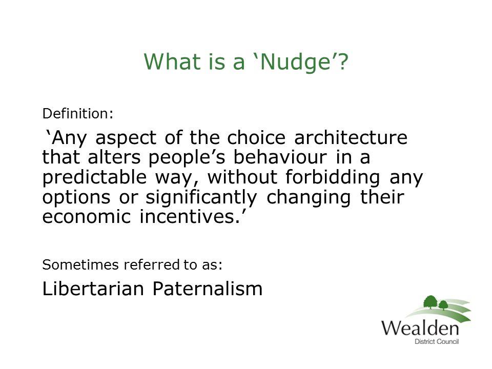 Nodge definition