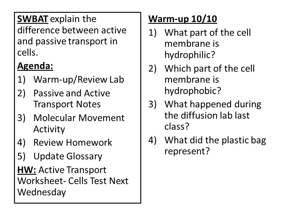 Cell Membranes 10/8 & 10/10/12  SWBAT infer how molecules