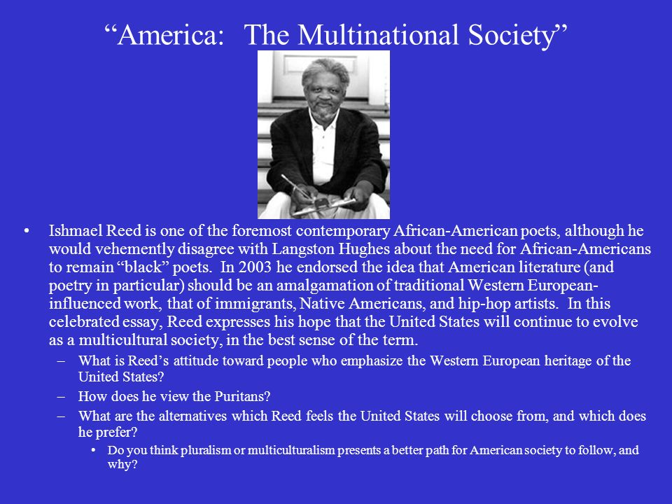 ishmael reed america the multinational society