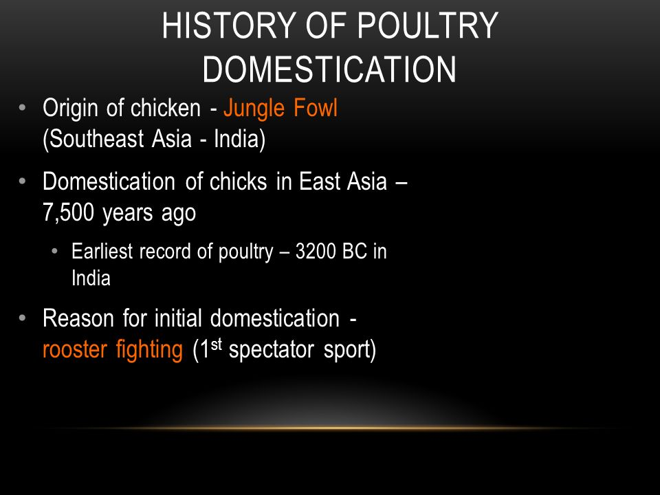 Courtesy of Joshua Daniel, 2014 POULTRY HISTORY AND INDUSTRY