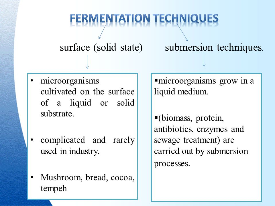 solid state fermentation and submerged fermentation