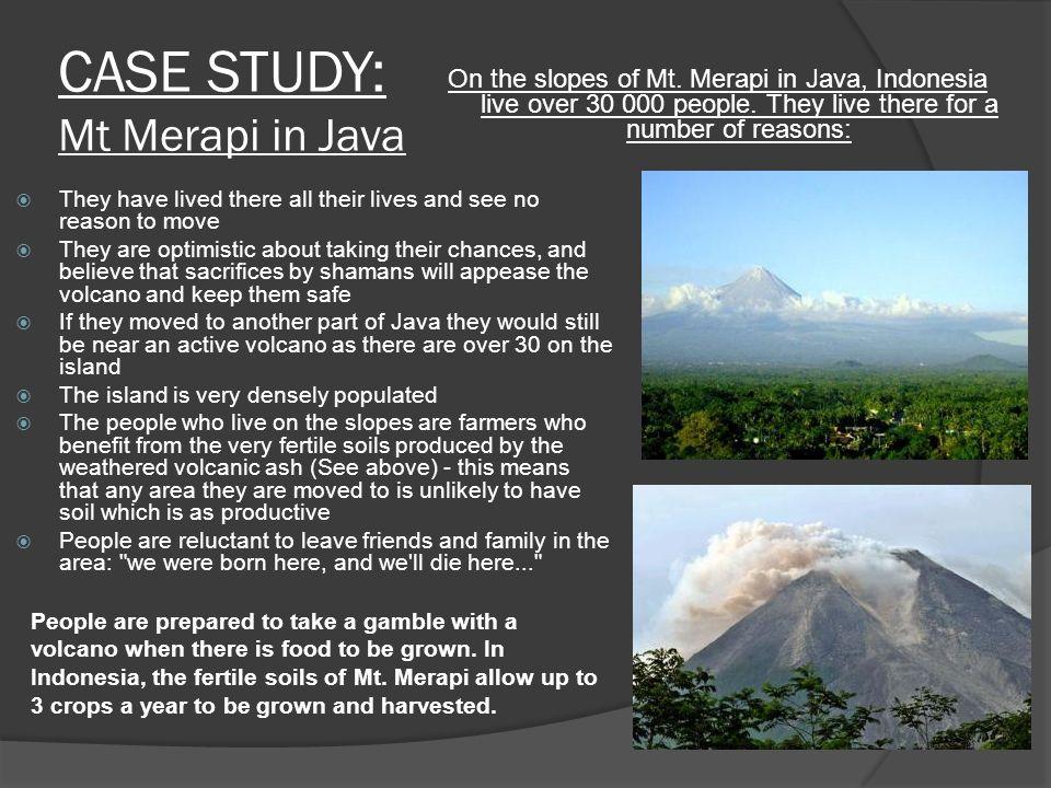 mount merapi a2 case study