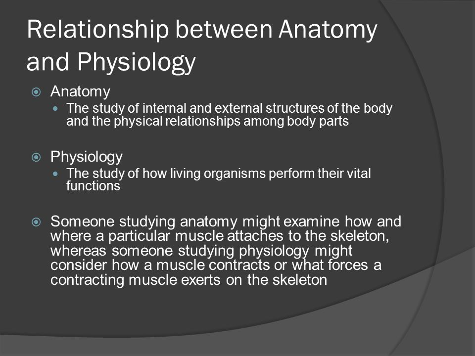 Introduction to Anatomy and Physiology. Relationship between Anatomy ...