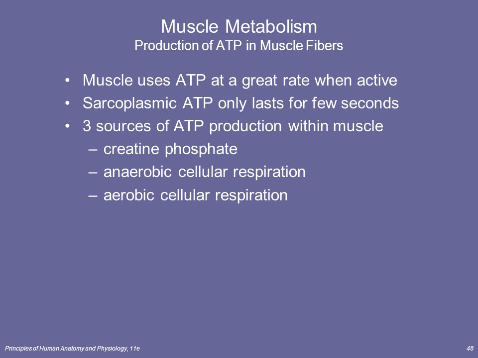 Principles of Human Anatomy and Physiology, 11e1 Chapter 10 Muscle ...