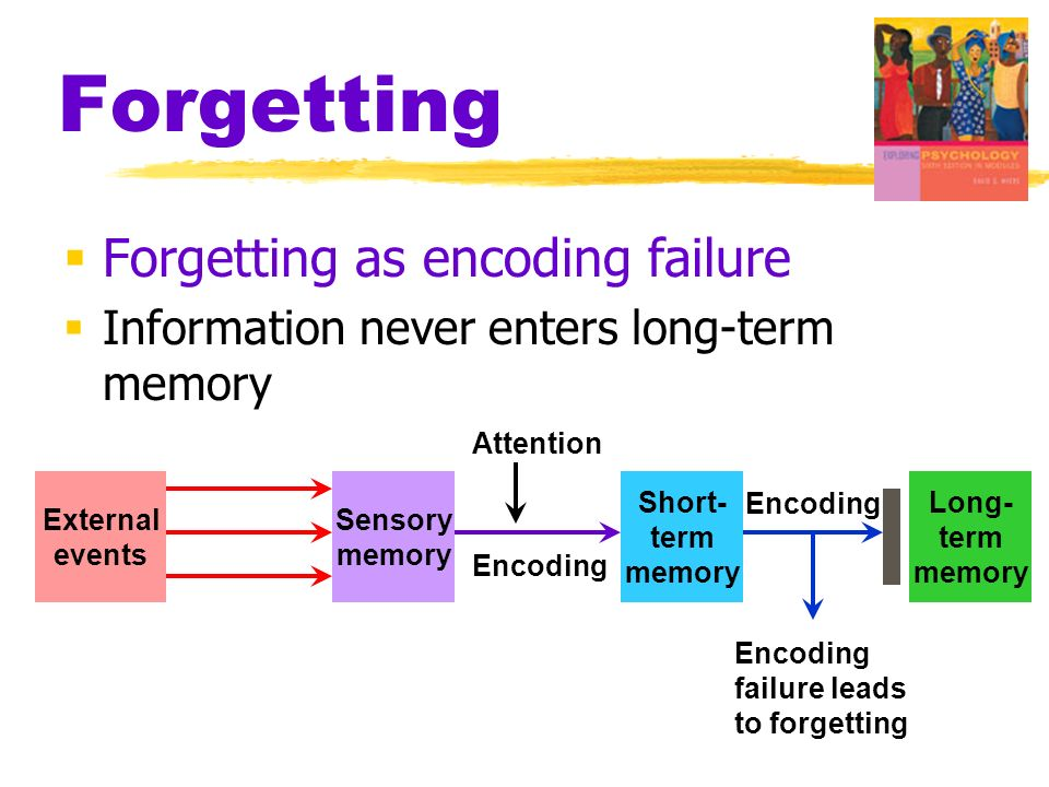 Ppt remembering & forgetting powerpoint presentation id:3317104.